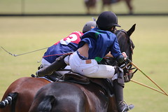 Polo (rdlt) Tags: horses horse sports sport canon caballo caballos photos outdoor sigma pony deporte polo equitation equino equinos 70d