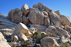 Cool Rock Formation at Joshua Tree National Park (Blue Rave) Tags: california park nature hiking joshuatree hike joshuatreenationalpark 2016 jtnp