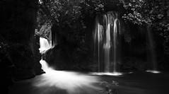 Puente de Dios (Memo Vasquez) Tags: fall mexico cascada sanluispotosí huastecapotosina tamasopo memovasquez puentededios paisajeenblancoynegro bwlanscape
