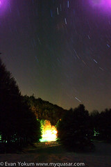 Cook Forest (Evan Yokum) Tags: thanksgiving sky night pennsylvania cookforest