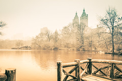 Central Park, NYC (nianci pan) Tags: park nyc newyorkcity winter urban mist lake snow plant newyork tree nature water rain misty fog river landscape pond centralpark manhattan sony foggy tranquility rainy serenity serene pan tranquil   sonyalphadslr  nianci sonyphotographing