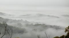 Shrouded Valleys, 12 February 2012 (Stilgherrian) Tags: bluemountains bunjareecottages