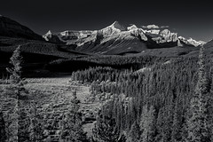 Survey Peak, Mount Erasmus, North Saskatchewan Valley (martincarlisle) Tags: trees blackandwhite canada mountains monochrome wow rockies shadows parks alberta rockymountains nationalparks valleys banffnationalpark canadianrockies sigmalenses photoninja niksoftware northsaskatchewanrivervalley sonycameras colourefex surveypeak mounterasmus silverefexii