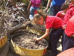 12496446_721463731324272_3635992727738634085_o (dernst) Tags: garden preschool huerta preescolar