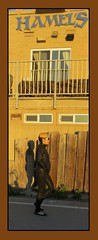 MOURNiNG BOWiE (goldtrout) Tags: ca woman girl sandiego calif boardwalk davidbowie missionbeach luna16