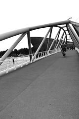 Bridge @ Amsterdam (Eurel Laugh) Tags: bridge bw amsterdam nikon europe d3100