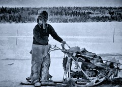 Musher with hook in hand (JLS Photography - Alaska) Tags: winter man monochrome alaska landscape outdoor wilderness musher sled sleds mountainman dogmushing dogracing dograce lastfrontier sleddogracing alaskalandscape jlsphotographyalaska