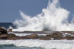Big splash (LSydney) Tags: sea rocks wave spray splash curlcurl northcurlcurl
