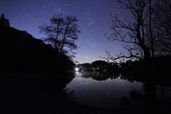IMG_7191X (Cilmeri) Tags: trees water wales reflections stars lakes astrophotography orion astronomy nightshots nightsky snowdonia taurus sevensisters constellations pleiades gwynedd eryri llynmair maentwrog