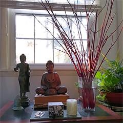 Winter Illuminations (Ronald (Ron) Douglas Frazier) Tags: window illinois midwest buddha buddhist buddhism indoor altar cutting dogwood