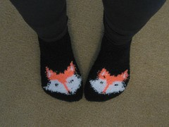 FOX SOX (elycefeliz) Tags: arizona tucson