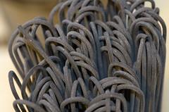 Mystery Object (Mike Serigrapher) Tags: macro mystery al pentax object 100mm di spaghetti nero seppia