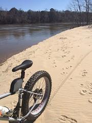 Alabama River (The Goat Whisperer) Tags: bike bicycle river fat alabama pugs pugsley surly fatbike