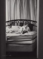 Quiet Time (Photography.by.Sara) Tags: blackandwhite bw dog pet love fun photography mutt nikon joy whippet dslr d600