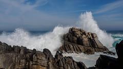 TripleOverHead-321 (bob felice) Tags: california us waves unitedstates pacificgrove 2016 tripleoverhead