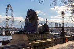 Embankment Sphinx (scarlet-pimp) Tags: bridge sphinx architecture clouds streetlamp londoneye bigben milleniumwheel places 7d timeout riverthames embankment hungerfordbridge goldenjubileebridge cleopatrasneedle jubileebridge oldandnew palaceofwestminster londonist thethames visitlondon elizabethtower