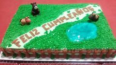Horse cake by Vicki, Rio Rico-Nogales, AZ, www.birthdaycakes4free.com