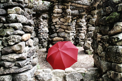Jardim Botnico (Miriam Cardoso de Souza) Tags: umbrela sombrinha otanicoriodejaneiro