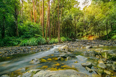 Never Never Creek (Jake Lampe) Tags: longexposure water river landscape nikon ultrawideangle