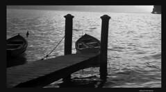 Guardando l'altra sponda -Scatti tra le due guerre del secolo scorso (Paolo Bonassin) Tags: analog scanned analogica fotoanalogica scansionedelnegativo photodigitized photoanalogue fotoanalogichedigitalizzate