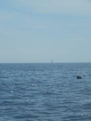 Plymouth-201506-52-HandDeeps-DiveSite-WithEddystoneInDistance (Tony J Gilbert) Tags: macro marine underwater plymouth diving scylla jameseaganlayne nikond300 handdeeps wwwdivingplymouthcom ceeking hilseapointrocks