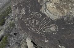Laying an Egg (Wandering Sagebrush) Tags: newmexico bird egg petroglyph rockart threeriversnationalpetroglyphsite birdglyphdsc1237