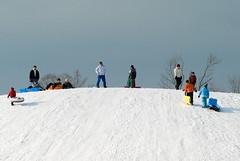 sledding-1 (ojbfiddlestyx) Tags: sledding