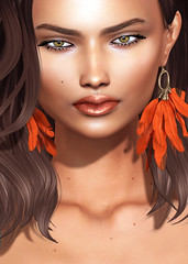 WIP (Shakeup!) Tags: secondlife fiore shakeup meshhead applier