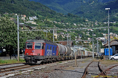 Rhône Valley Cargo Collection