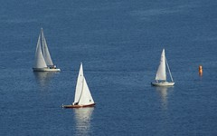 an ocean apart (Riex) Tags: lake switzerland boat suisse regatta sailboats bateau a100 amount lacleman voiliers lacustre regate sal75300 minoltaamount jeudi12