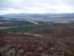 From Creag Bheag, 2016 Mar 23 (Dunnock_D) Tags: uk sky cloud forest woodland river grey scotland highlands cloudy unitedkingdom britain heather highland spey strathspey badenoch creagbheag