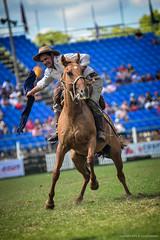 Jineteada gaucha, in the  Uruguay's Criolla Week (>caleb<) Tags: brazil argentina cowboys uruguay rodeo montevideo asado gauchos horsemanship jineteada