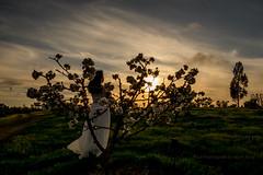 I.W. (letphotospeak) Tags: fuji xf xt10  xf1855mmf284 xf55200mmf3548 56mmf12 letphotospeak samyangseriesii8mmf28fisheye