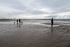 Leaving (Hilary Causer) Tags: uk greatbritain sea england sky sculpture men beach weather standing march sand overcast coastal installation northeast greyday crosby dogwalking antonygormley dullday anotherplace