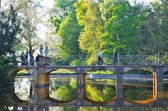 people (ecordaphoto) Tags: light nature alberi nikon natura ponte luce d5100