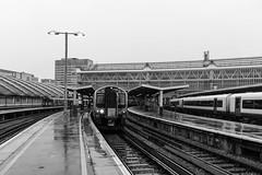 Class 450, Waterloo 2013-01-16 (Michael Erhardsson) Tags: england oktober london station class railwaystation waterloo 450 hst resa tg svartvitt 2013 grskala motorvagn