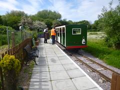 P1050698 (Hampton & Kempton Waterworks Railway.) Tags: loop devon galaday 2015 darent
