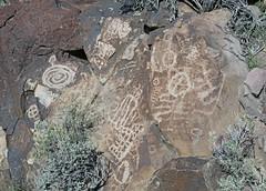 Petroglyphs / Blackrock Well Site (Ron Wolf) Tags: california abstract archaeology circle spiral grid nationalpark nativeamerican salinevalley petroglyph anthropology shoshone rockart deathvalleynationalpark superimposition piute numic bisectedcircle sectionedcircle tailedcircle