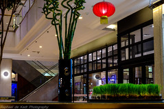 Shopping Mall View! (Raphael de Kadt) Tags: red architecture night mall restaurant interior lantern oriental lampshade johannesburg