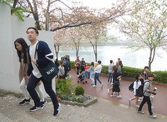 C16-Seoul-Parc Seokcho(18) (jbeaulieu) Tags: seoul coree parc seokcho