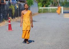 Walking monk (Farangrakthai) Tags: canon thailand walk bangkok buddhist monk thai marche thailande 6d moine bouddhiste thailandais 135mmf2