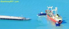 Italica General Cargo Vessel. (anthony851.com) Tags: tugboat tug lyttelton italica blackadder purau generalcargovessel tugpurau tugblackadder