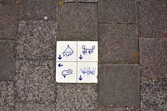 'Stoeptegel' Draaiweg Utrecht (FaceMePLS) Tags: utrecht nederland thenetherlands streetphotography trottoir stoep steen tegel mozaek straatfotografie facemepls nikond300 straattegel trottoirtegel straatbeslag