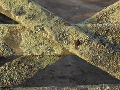 Vieja tranquera (Eduardo Oliver Menda) Tags: vieja campo tranquera