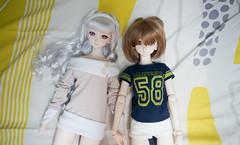 Untitled (Tatsuya cXw) Tags: dd dollfie volks dds hagiwara shijou takane dollfiedream idolmaster yukiho