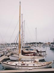 Hubiramos huido (aarton) Tags: harbor muelle boat barco ship yate yacth