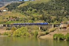Comboio Especial n. 21861 (Vila Joya - Douro) - Granjo (valeriodossantos) Tags: portugal train cp especial comboio riodouro furgo 1400 passageiros caminhosdeferro sy3 sy4 sy5 mesofrio carruagens linhadodouro fmnf locomotivadiesel comboiopresidencial df700 vilajoya fundaomuseunacionalferrovirio dyf408 sryf2 salopresidencial salorestaurante granjo a7yf704 carruagemdosjornalistas salodosministros vilajoyadouro