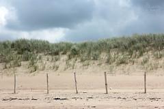 (Maddily M.G.) Tags: sunset sea mer beach nature eau dunes dune noordzee northsea knokke nordsee plage merdunord zwin