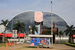 IMG_7173 (images54620) Tags: street streetart art brasil cat chat gato brasilia brsil brazilia masnada images54620 geraldmasnada