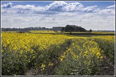 Swindon Ridgeway (ajr1961) Tags: canon swindon di tamron vc hdr usd ridgeway 70300 650d